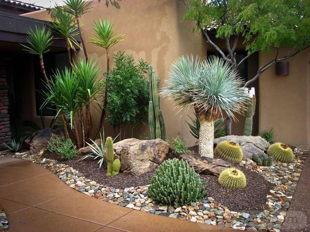 tropical garden ideas-733664595528156508