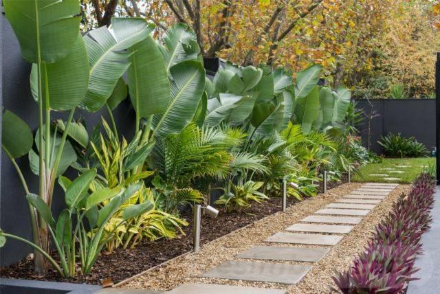 tropical garden ideas-638666790884719691