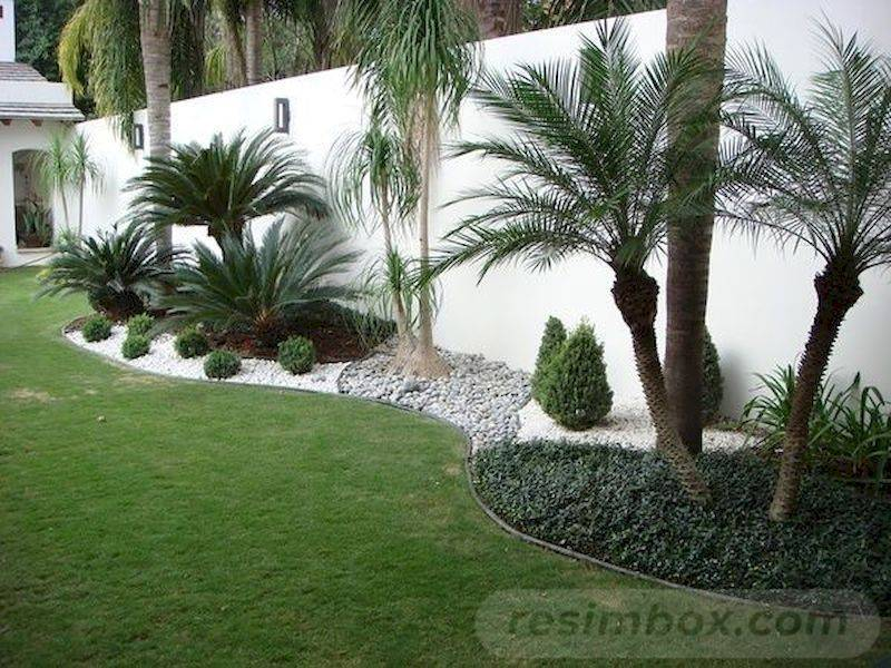 tropical garden ideas-722827808922878128