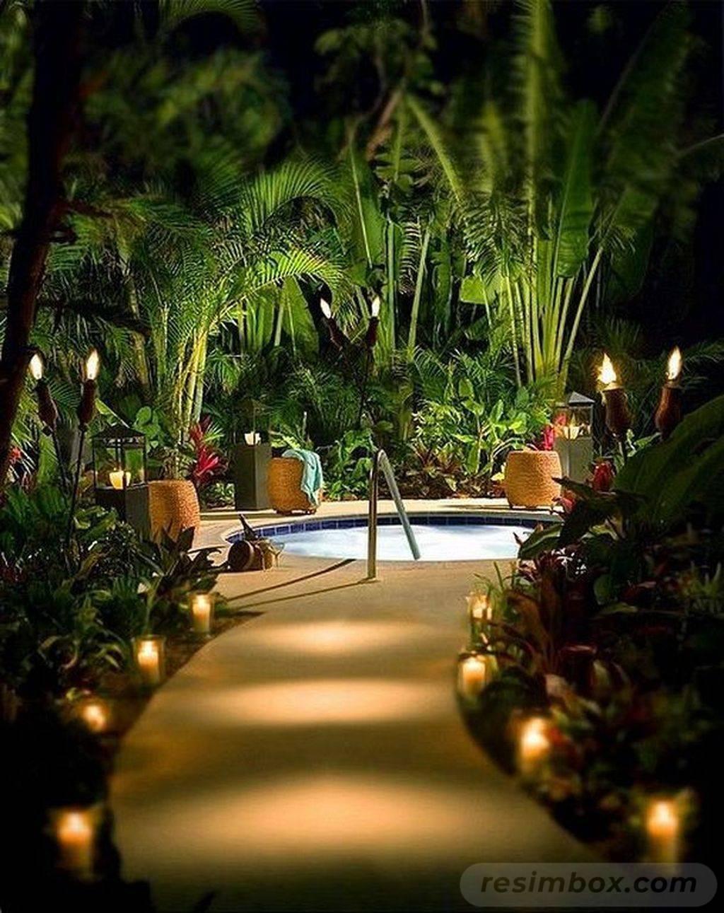 tropical garden ideas-603060206332504433