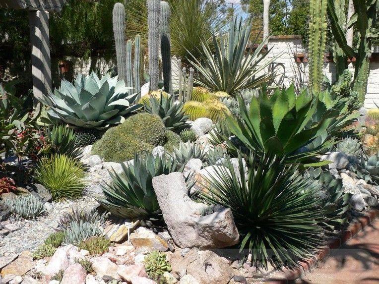 tropical garden ideas-612771093028187224