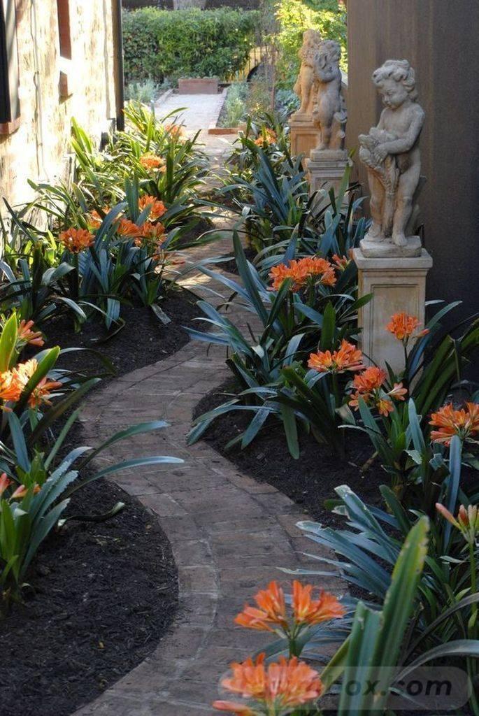 tropical garden ideas-621848661029342113