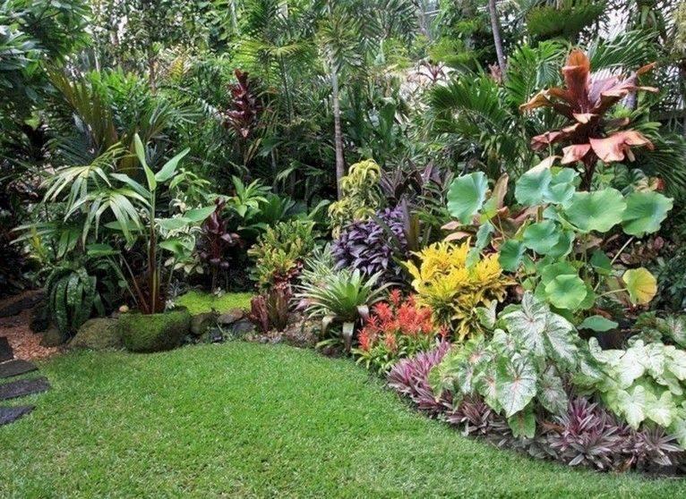tropical garden ideas-696932111062417457