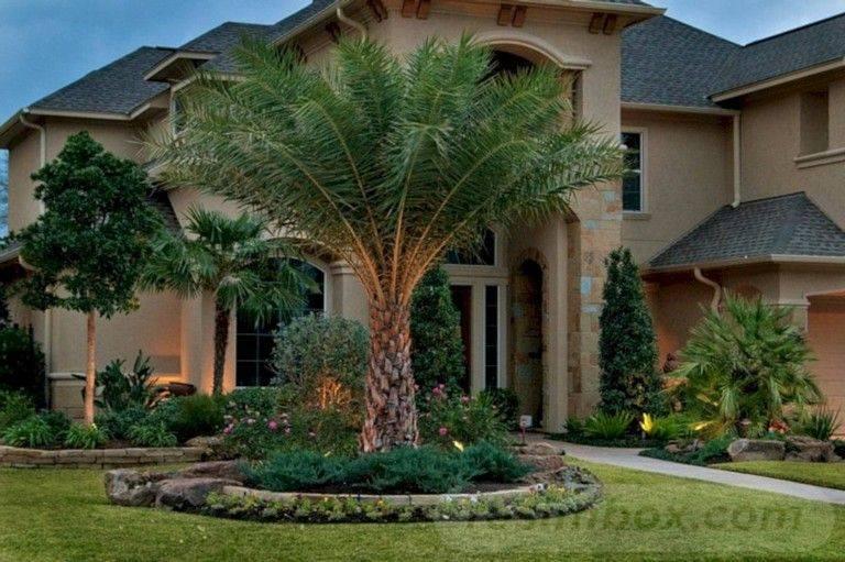tropical garden ideas-696932111062417443