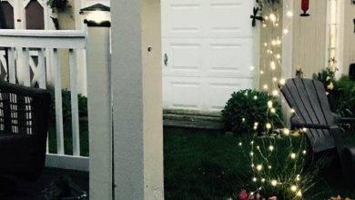 20 Wonderful Easy Dıy Backyard Ideas That Won't Break The Bank