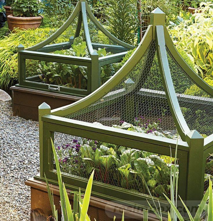 diy easy garden ideas-773493304733223032