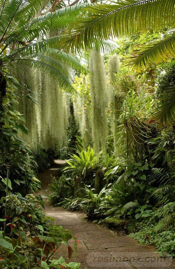 diy easy garden ideas-421157002650930568