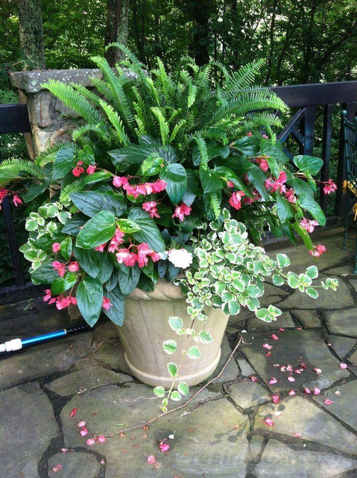 diy easy garden ideas-771874823617558207