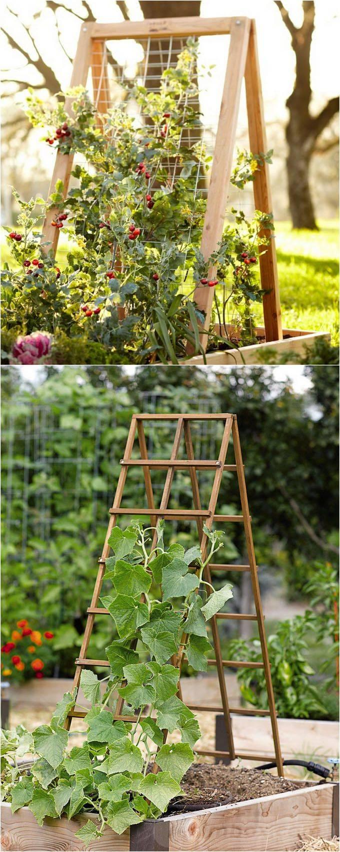diy garden easy-98657048068401396