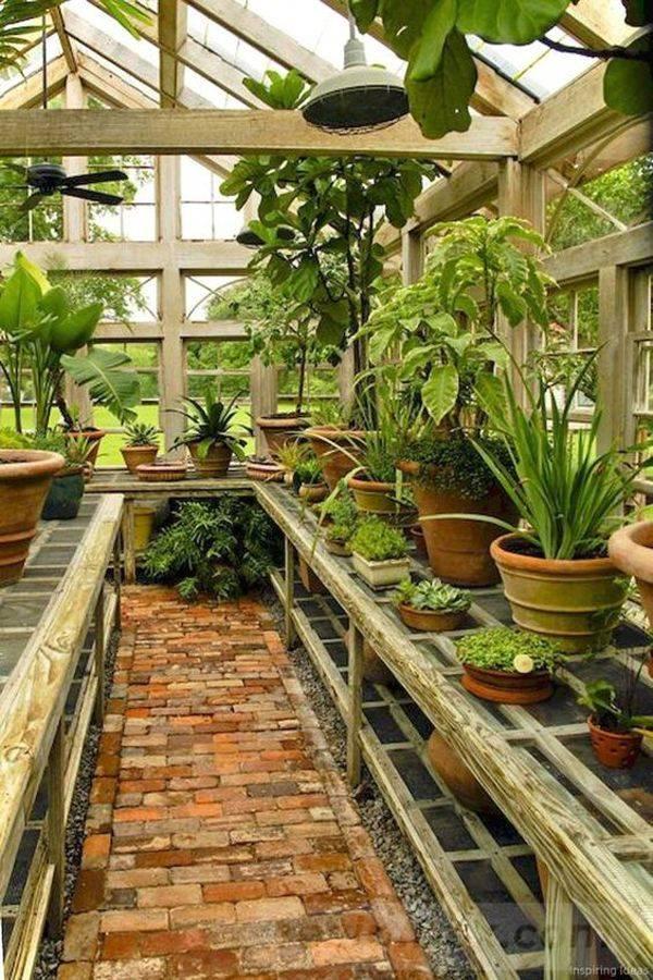 diy garden easy-837317755701219696