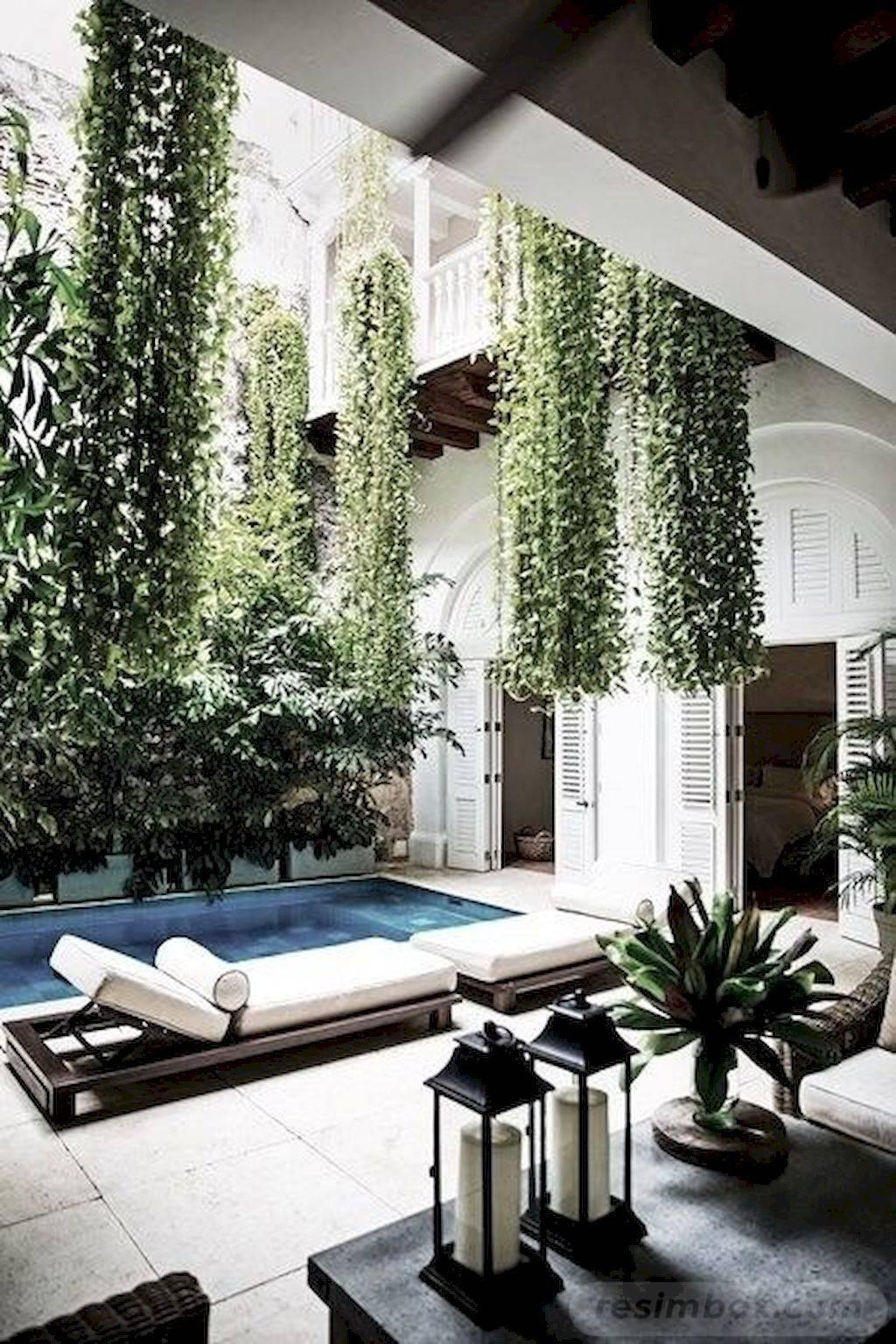 tropical garden ideas-797770521470732997