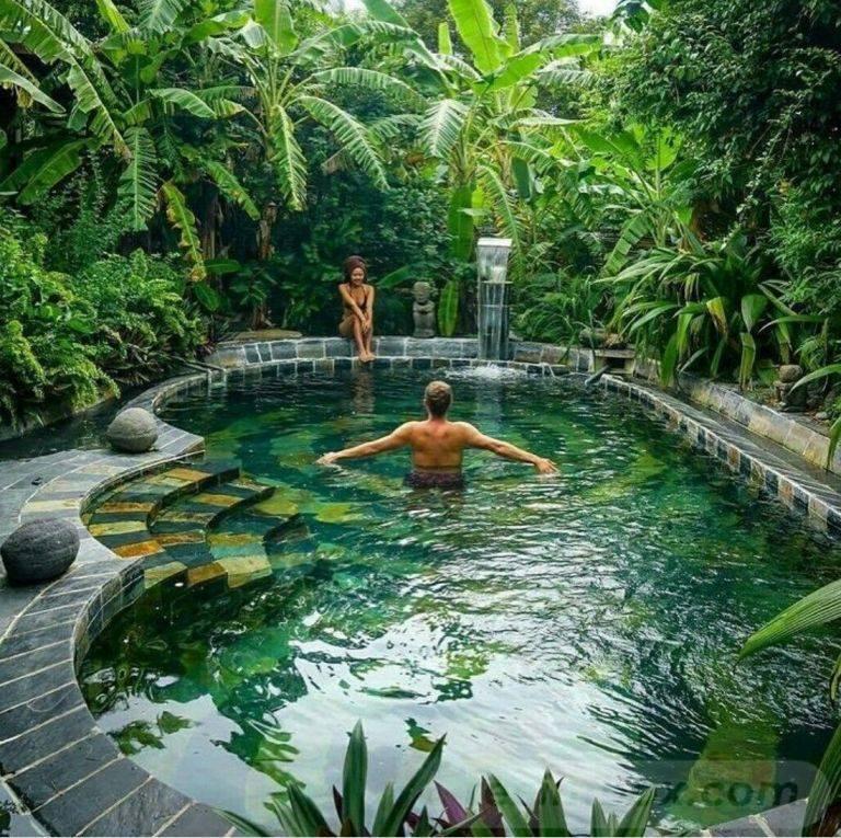 tropical garden ideas-449163762834765566