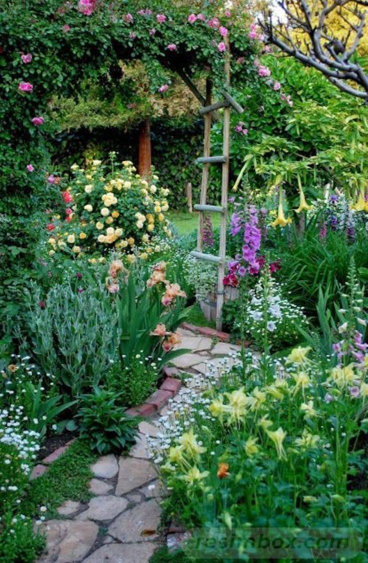 tropical garden ideas-663084745115612156