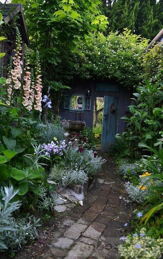 tropical garden ideas-831406781186353481