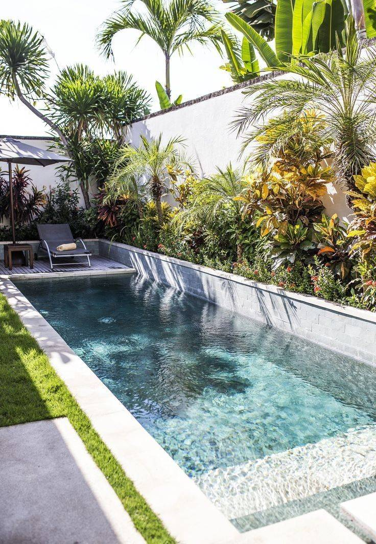 tropical garden ideas-663295851349778333