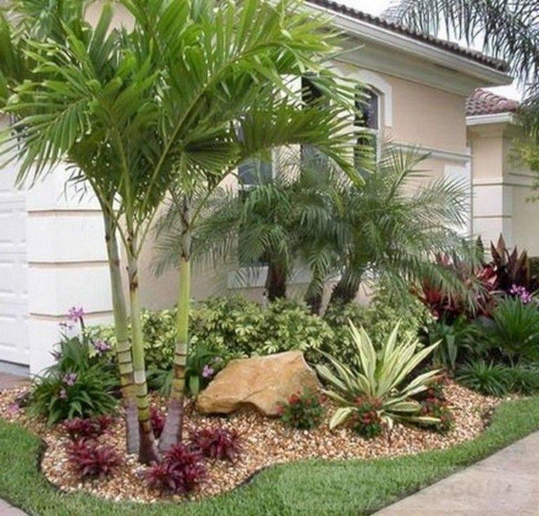 tropical garden ideas-696932111062417476