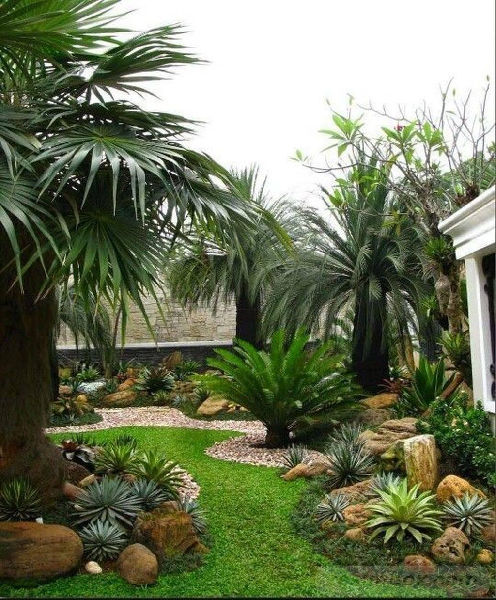 tropical garden ideas-583779170428134730