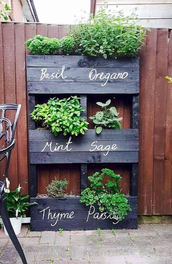 diy garden easy-663084745116938569