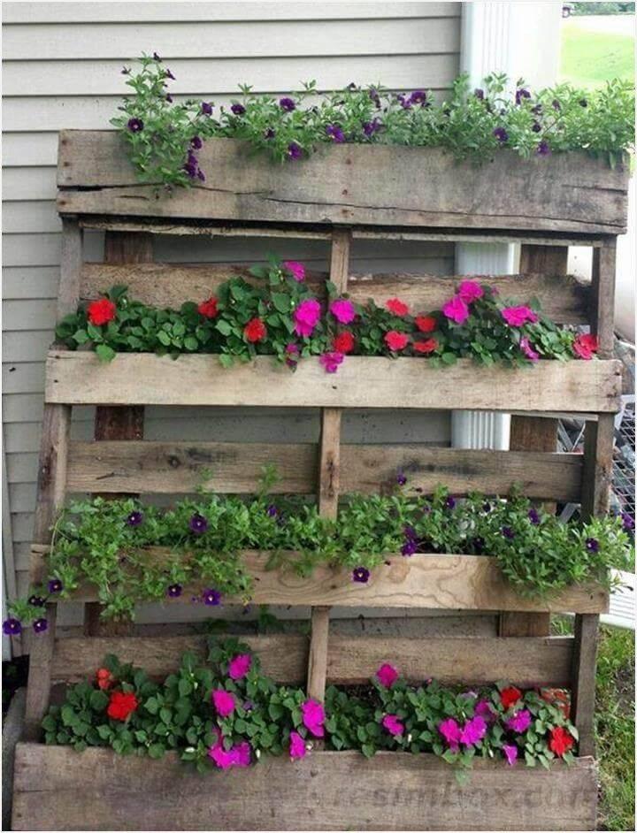 diy garden easy-617204323910102976
