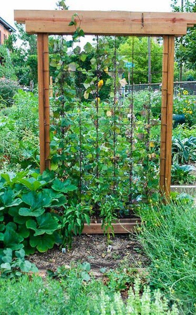 diy garden easy-812759063979720271