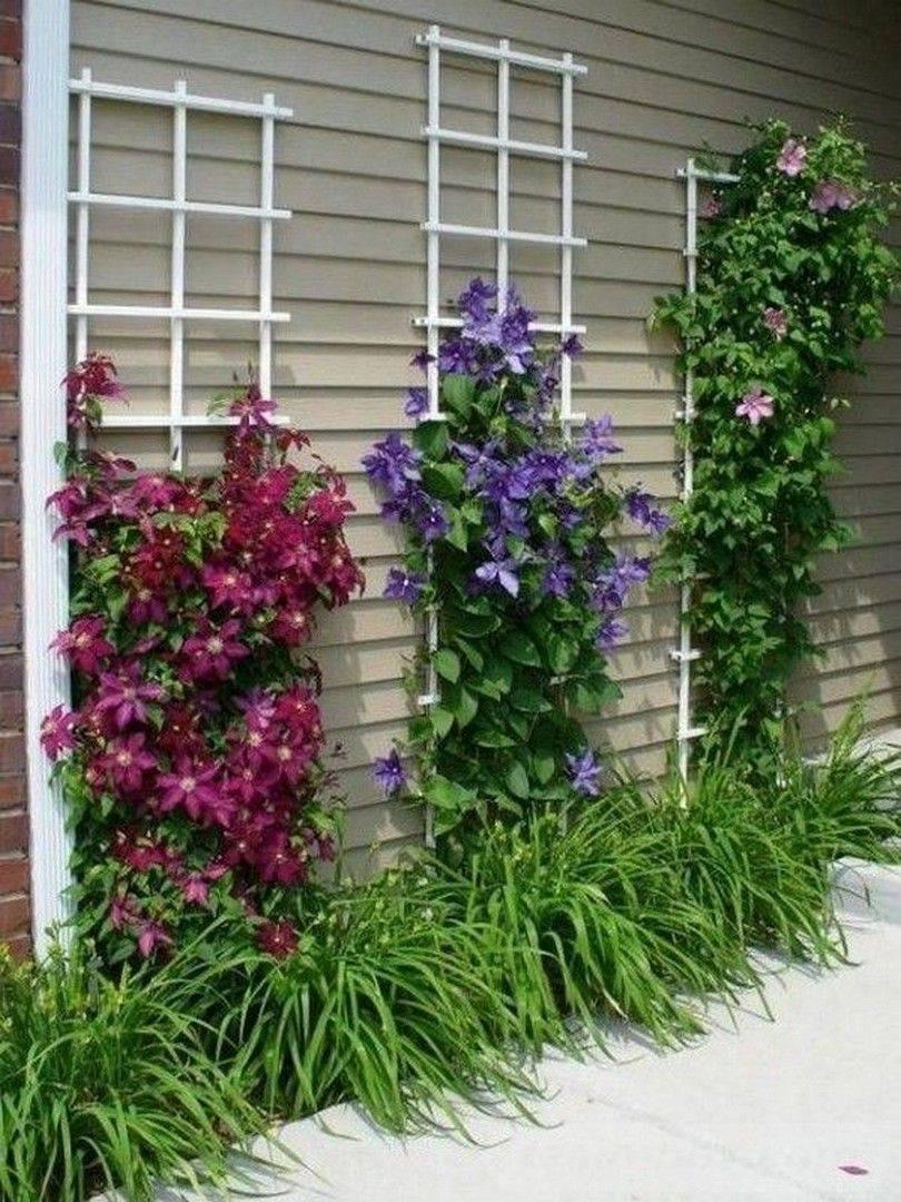 diy garden easy-812759063979752663