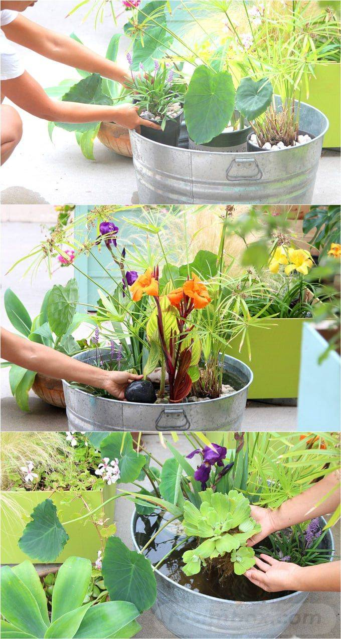 diy garden easy-239816748893247849