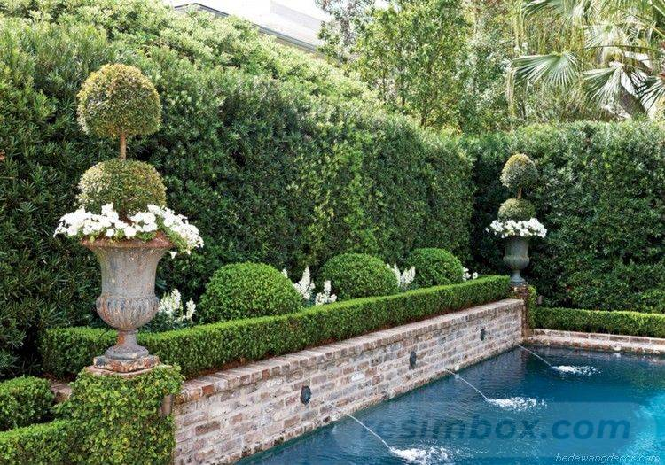 amazing garden ideas-57632070217867262