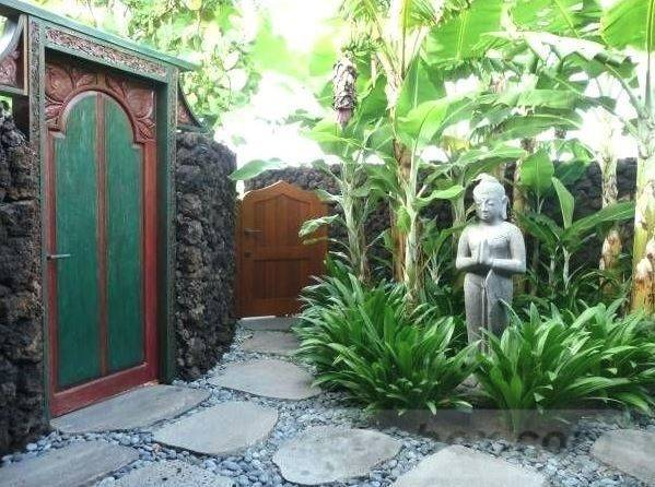 tropical garden ideas-476607573065658290