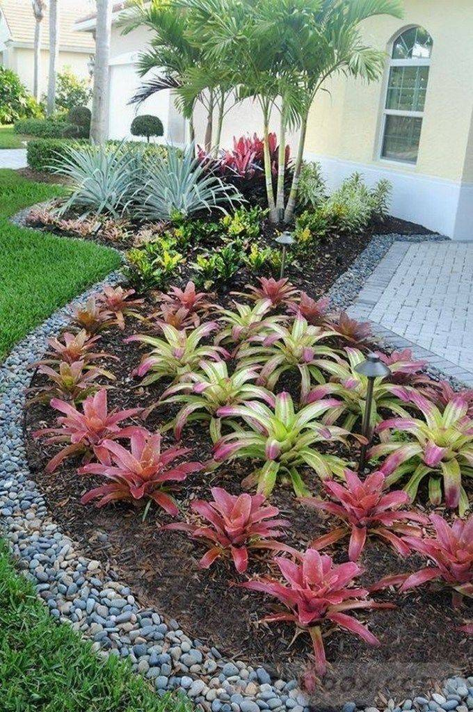 tropical garden ideas-620230179912239880