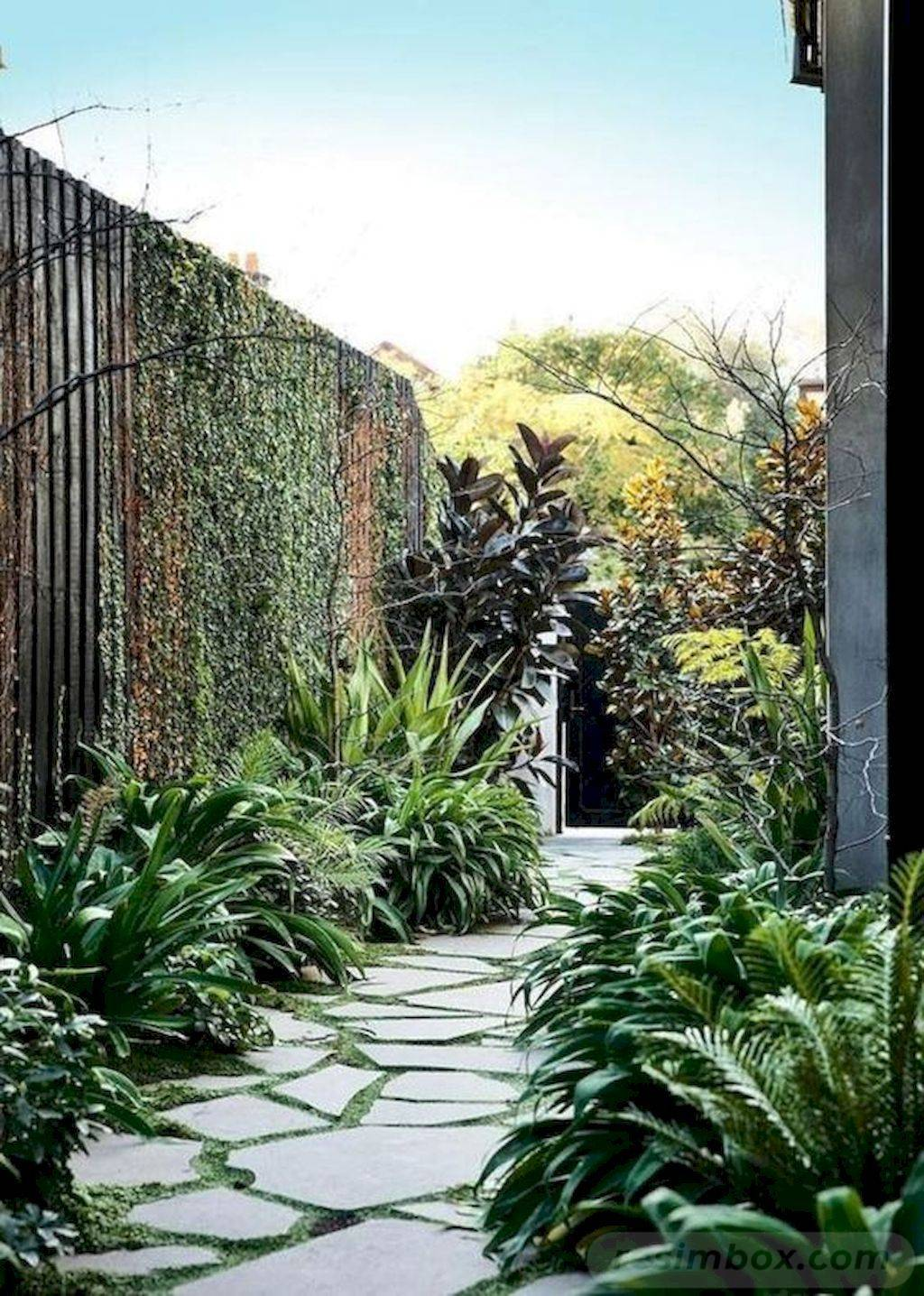 tropical garden ideas-687080486880977444