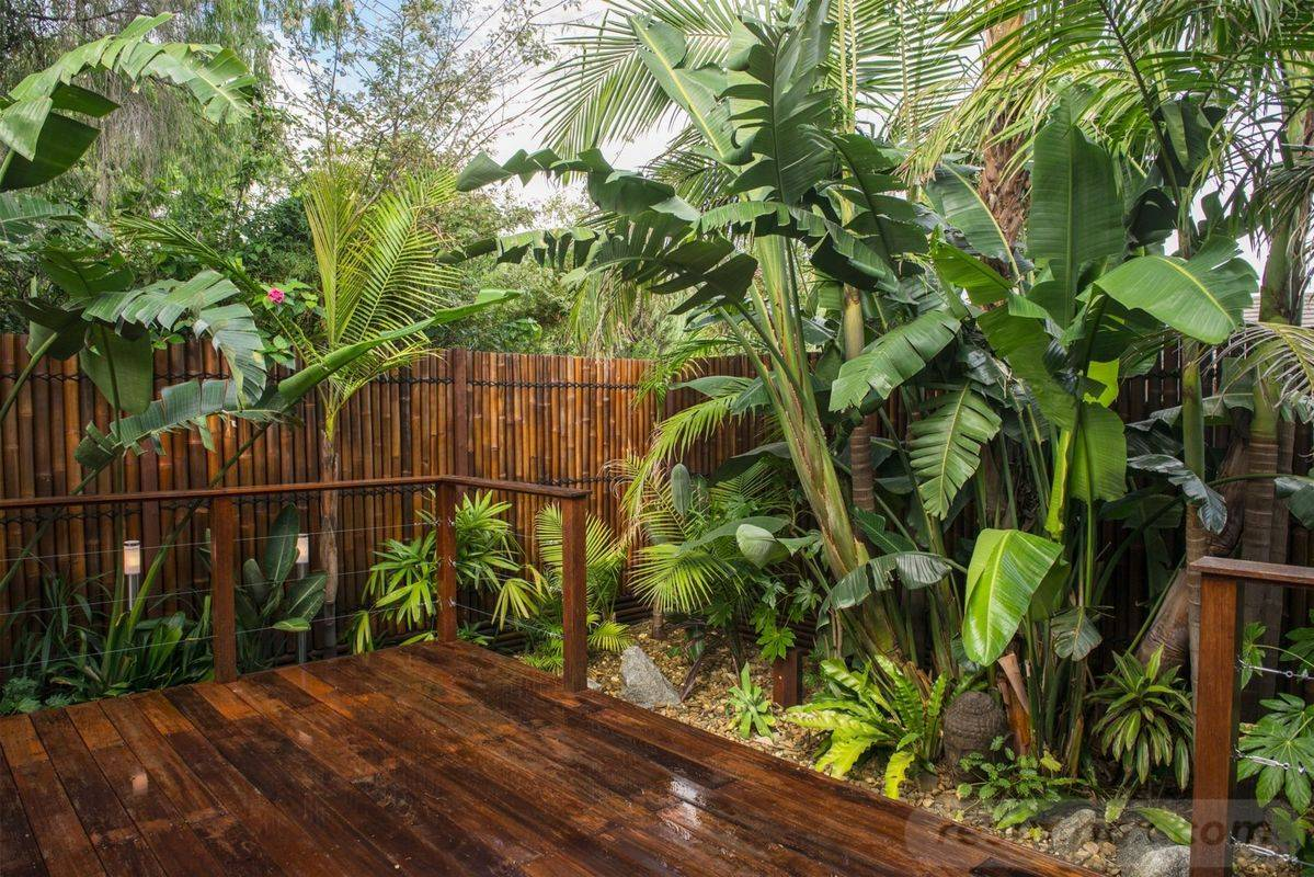 tropical garden ideas-812759063980432816