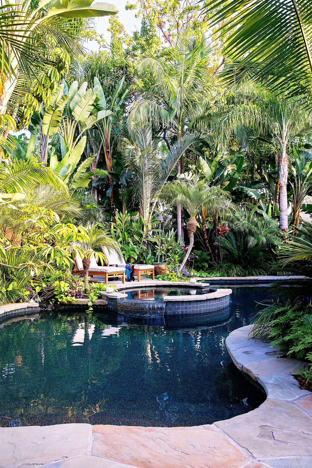 tropical garden ideas-851250767045595671