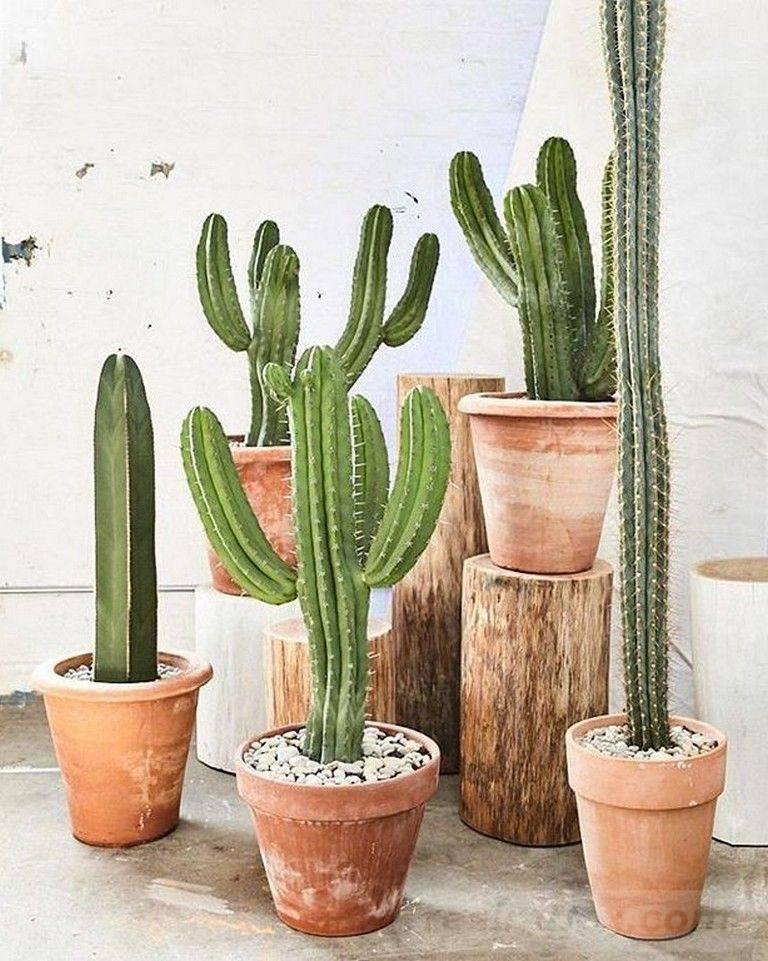 creative garden ideas-852447035696837181