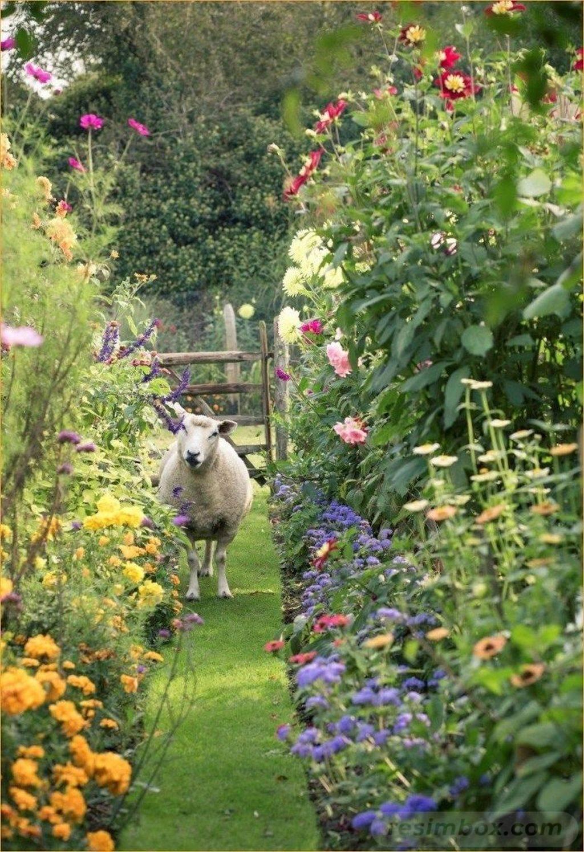 creative garden ideas-743938432176490890