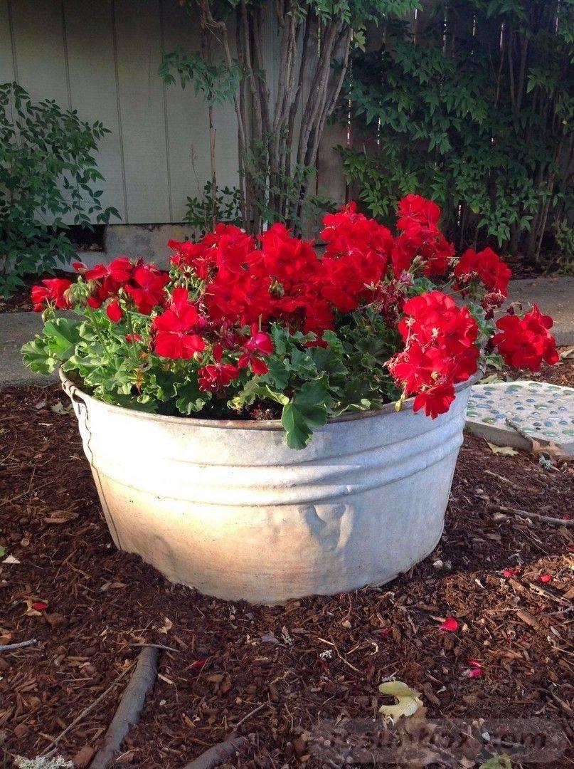 creative garden ideas-812759063979776728