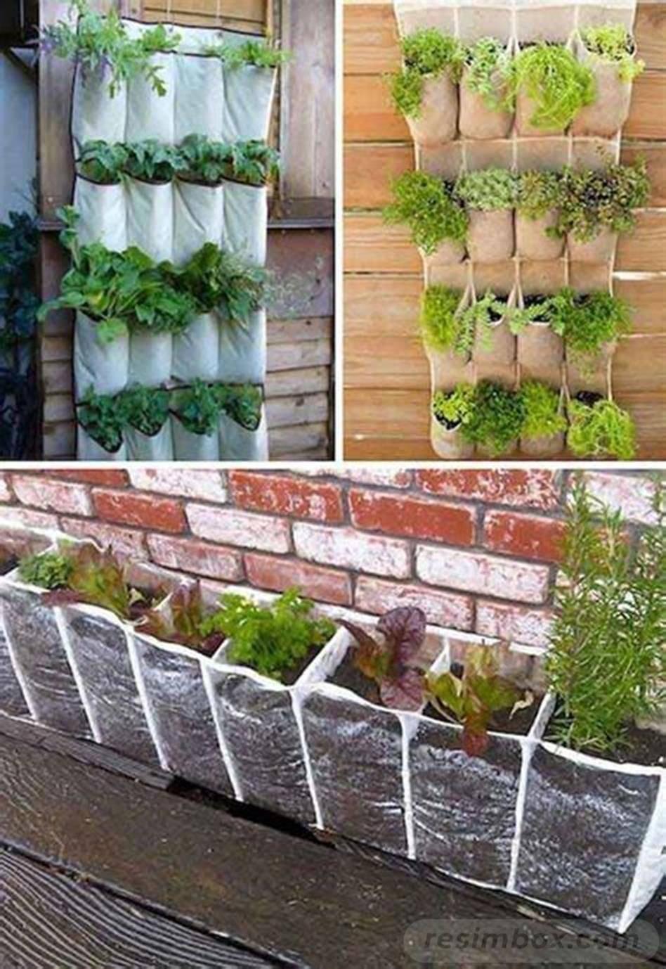 creative garden ideas-686869380649845117