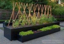 27 Most Popular Incredible Moongate Garden Ideas For Amazing Garden
