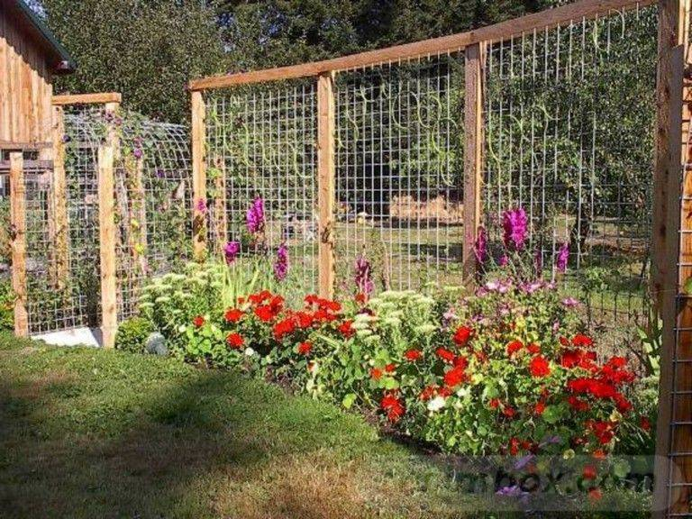 amazing garden ideas-676736281484622762
