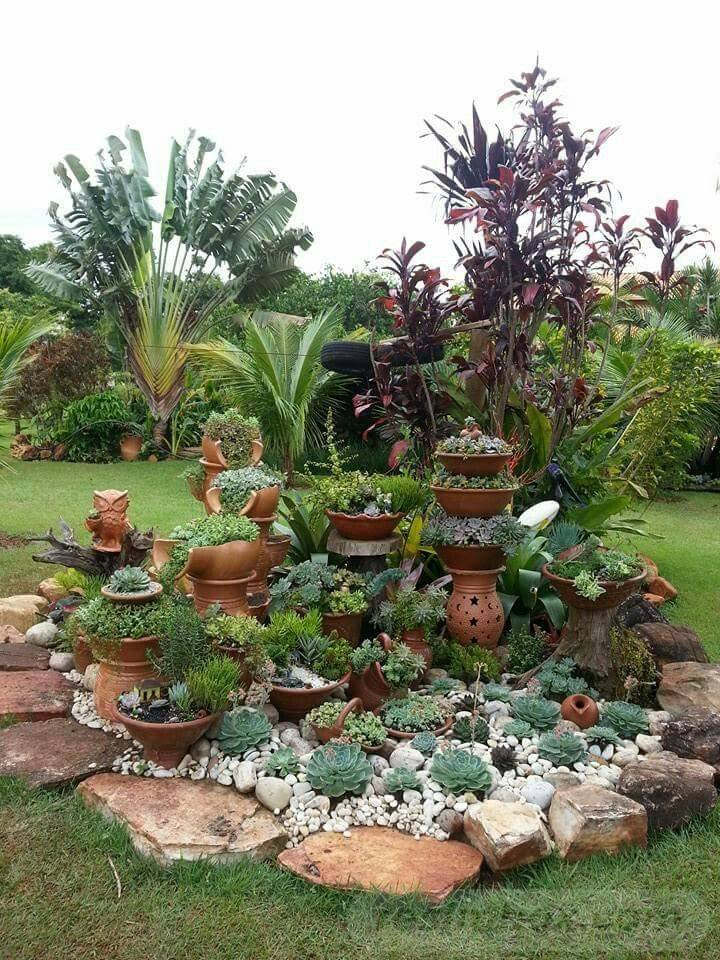 tropical garden ideas-819232988449404669
