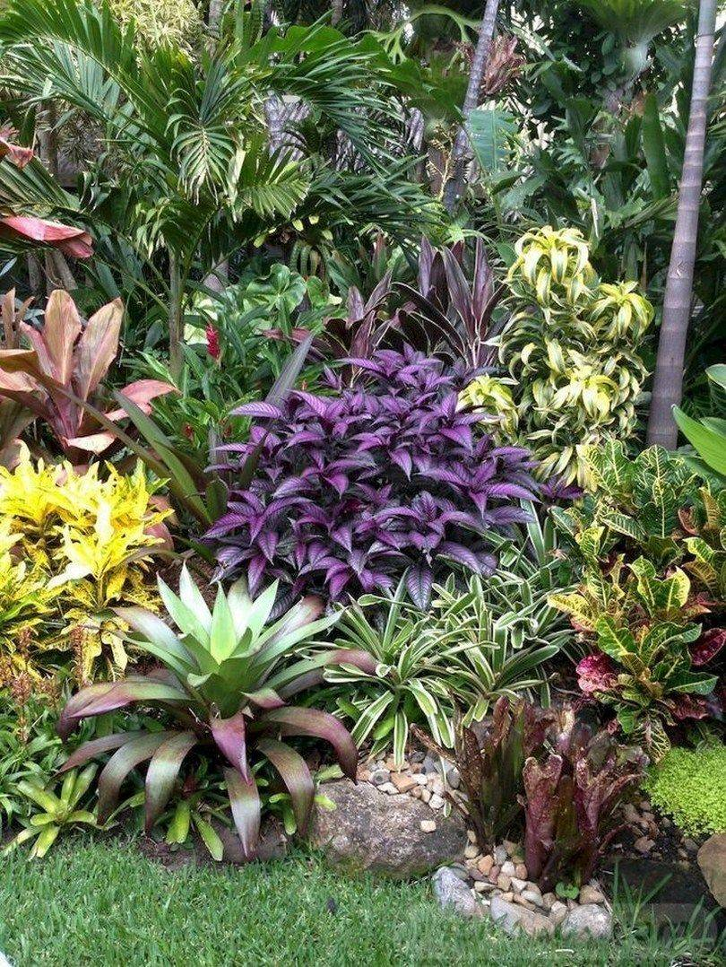 tropical garden ideas-723953708830981597