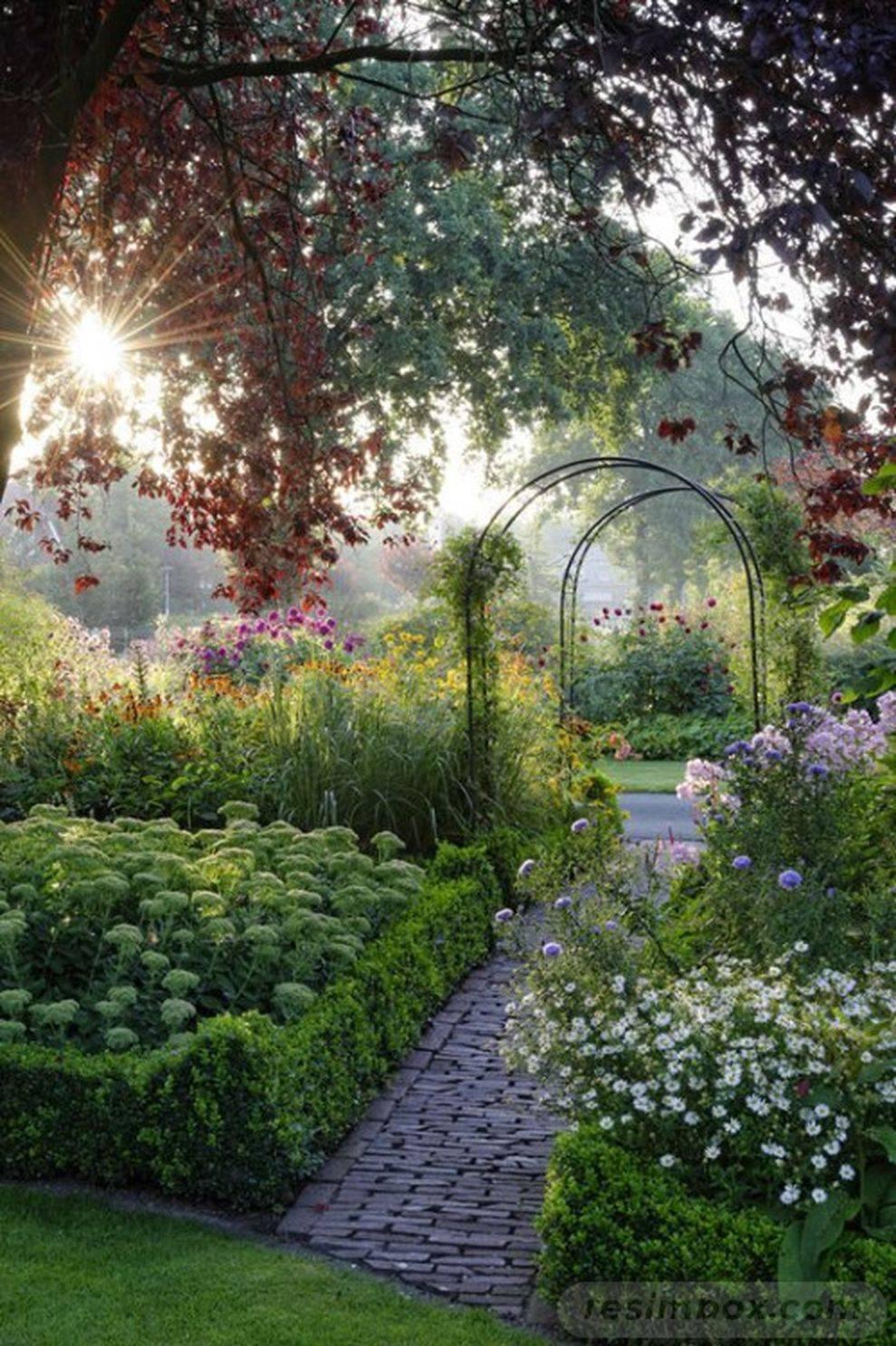 tropical garden ideas-Abi_MluZB-iAN5_5U0UM0CUw6suv4NZCdwrvSlxxMAcT_LhXZRlMIpI