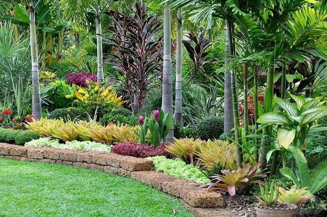 tropical garden ideas-174936766762540843