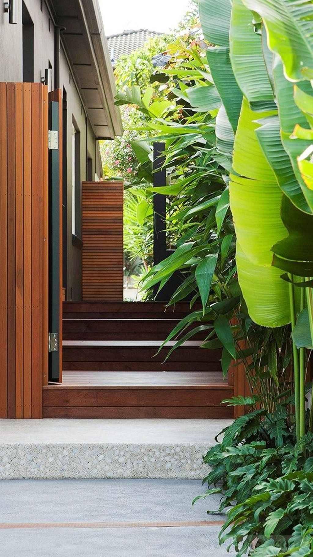 tropical garden ideas-859624647606218878