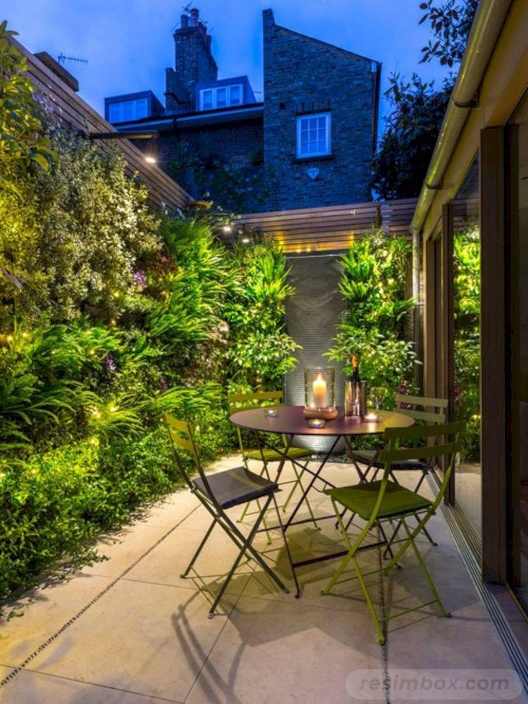 tropical garden ideas-413627547026497988