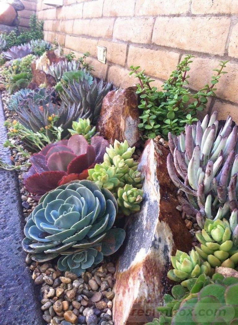 tropical garden ideas-AV-NGptn_Fi65twV7AbWl5pbGTI4nLPQuolY_UFzOMbW-gbHVN8WtcY