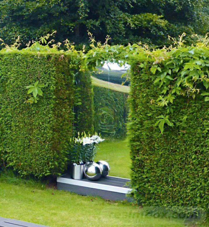 tropical garden ideas-528610075012383272