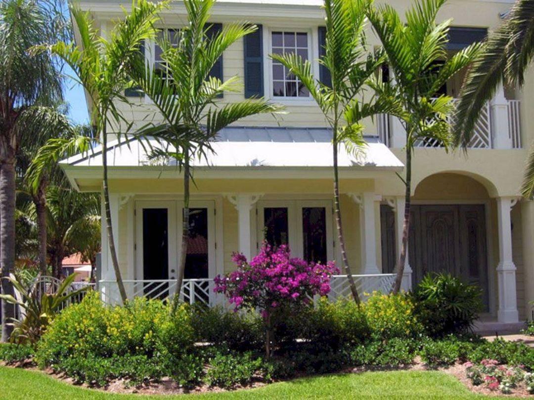 tropical garden ideas-411797959676128101