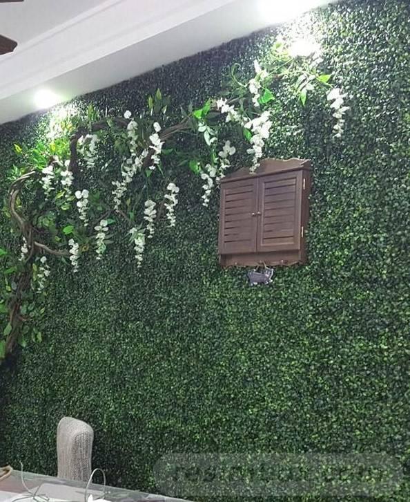 tropical garden ideas-273241902378725940