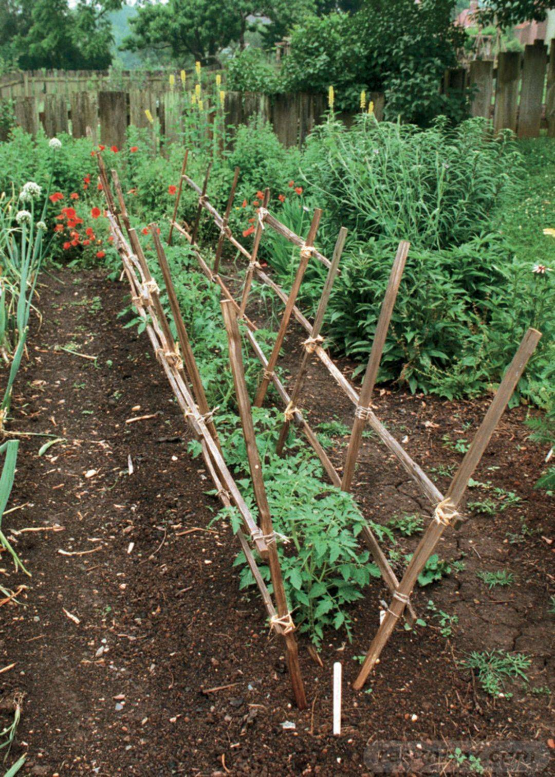 diy garden easy-597219600560563359