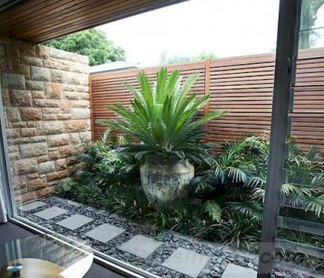 tropical garden ideas-33003009756609746